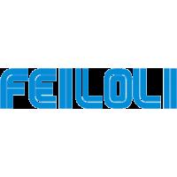 Feiloli
